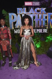 HOLLYWOOD, CA - JANUARY 29: Actor Nabiyah Be at the Los Angeles World Premiere of Marvel Studios' BLACK PANTHER at Dolby Theatre on January 29, 2018 in Hollywood, California. (Photo by Alberto E. Rodriguez/Getty Images for Disney) *** Local Caption *** Nabiyah Be