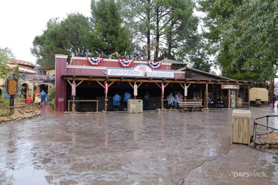 Rainy Day at the Disneyland Resort-138
