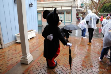 Rainy Day at the Disneyland Resort-86