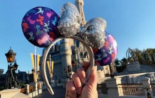 Disney Princess Half Merchandise