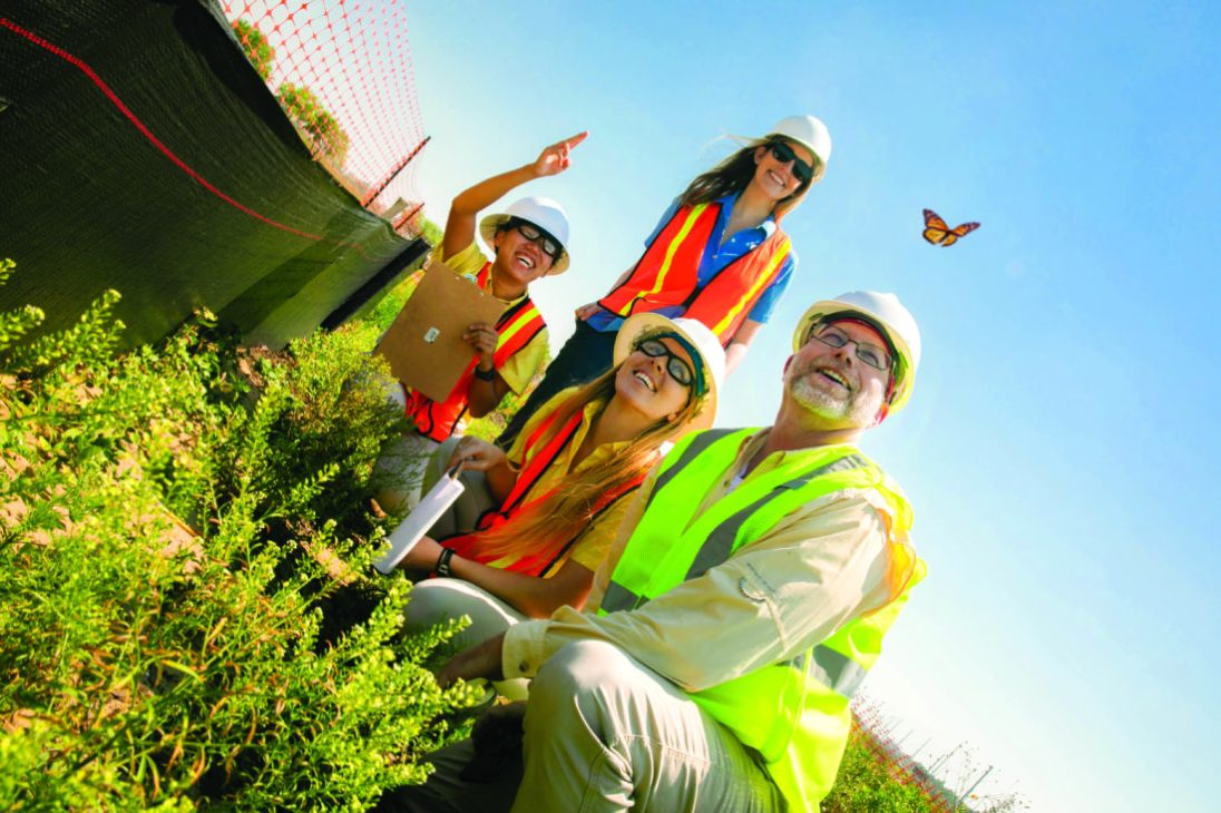 Disney Cast Members have collaborated to help make more than two-thirds of the new solar facility pollinator friendly, with the goal of creating a safe and welcoming habitat for butterflies, bees and other insects, including endangered and at-risk species. (Olga Thompson)