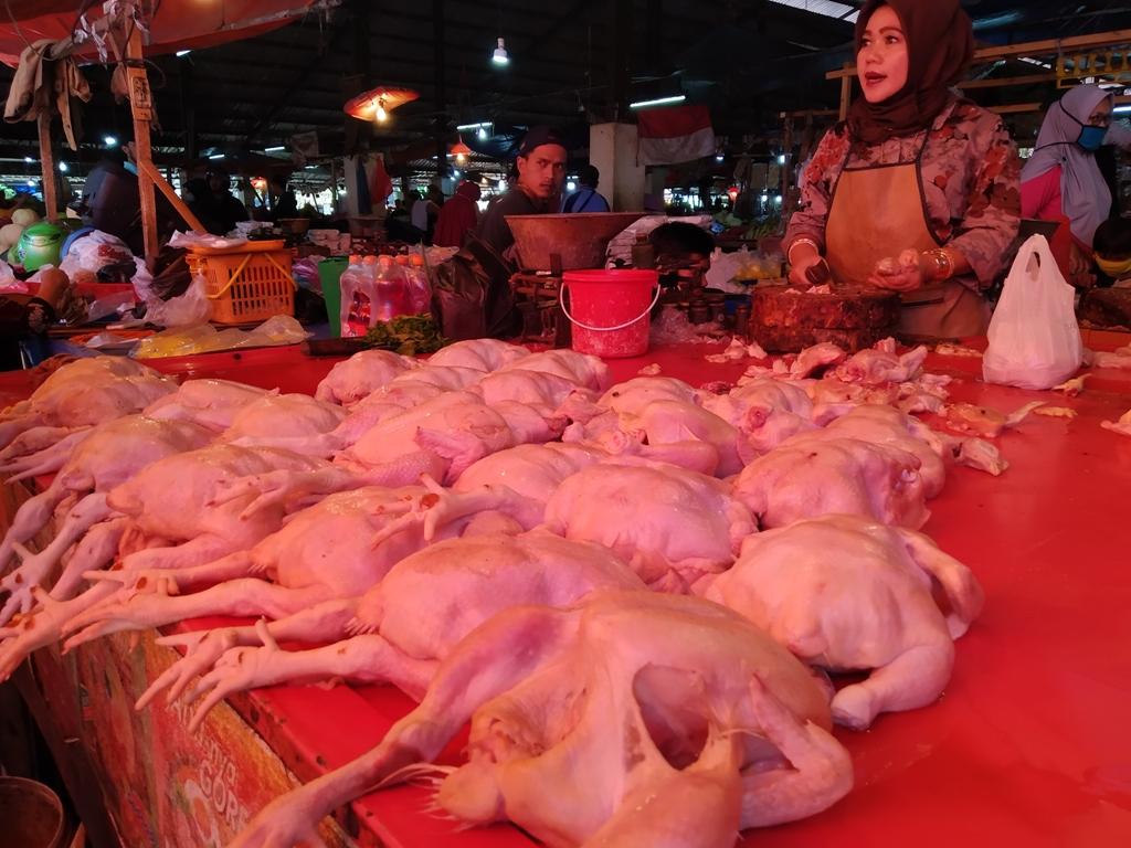 Ilustrasi/Pedagang daging ayam potong di Pasar Induk Pasir Hayam, Cilaku, Kabupaten Cianjur, Jawa Barat. (Foto: Angga Purwanda/dara.co.id)