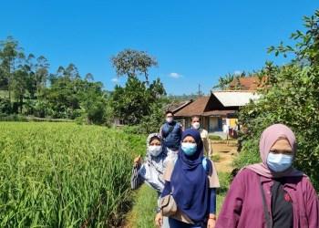 Wisatawan menikmati suasana alam Desa Mekarwangi, Lembang, Kabupaten Bandung Barat. (Foto: istimewa)
