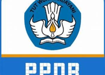 Ilustrasi PPDB (Foto: disdikpora.kamparkab.go.id)