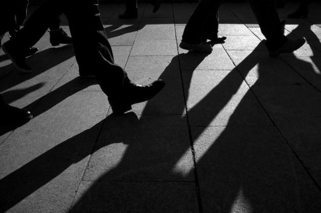 shadow run_alexander ess