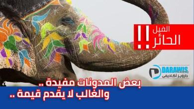 الفيل الحائر