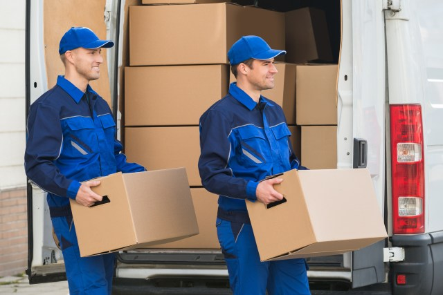 packers and movers startup