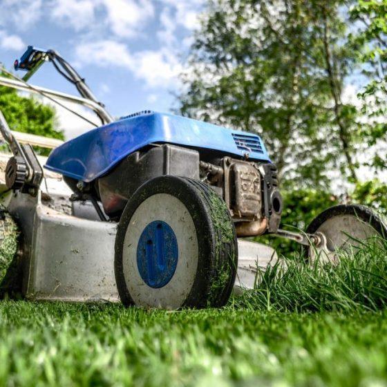 lawn mowing app