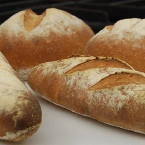 dough + bread