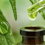How to Use CBD Oil in Food and Drinks?
