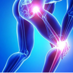 Who all are the best orthopedic doctor in India?