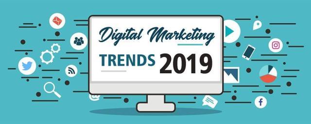 Digital Marketing Executives