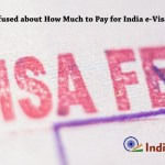 Confused about How Much to Pay for India e-Visa?