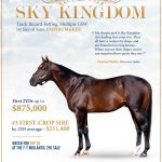 Sky Kingdom Darby Dan Farm