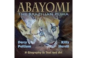 ABAYOMI cover