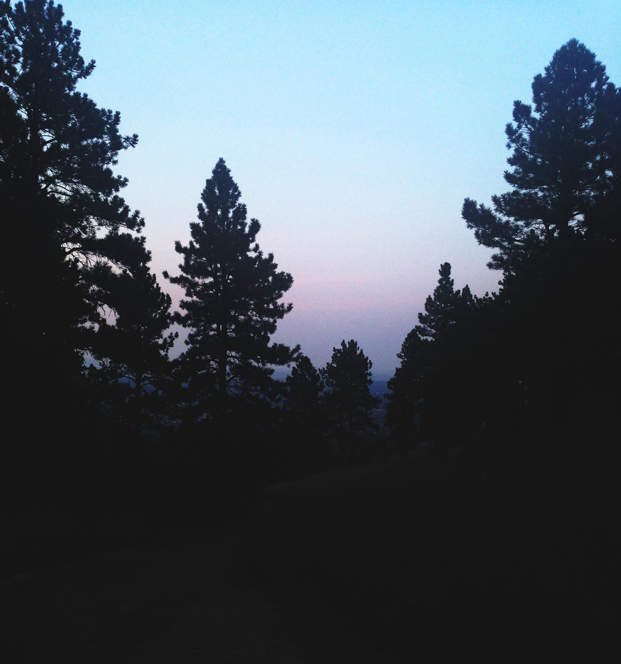 Sunset through the trees, Chautauqua, Boulder Colorado