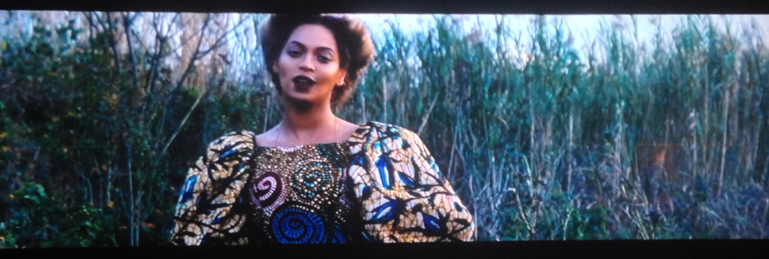 Beyonce's Lemonade and the Eco Negro Aesthetic / Darker than Green