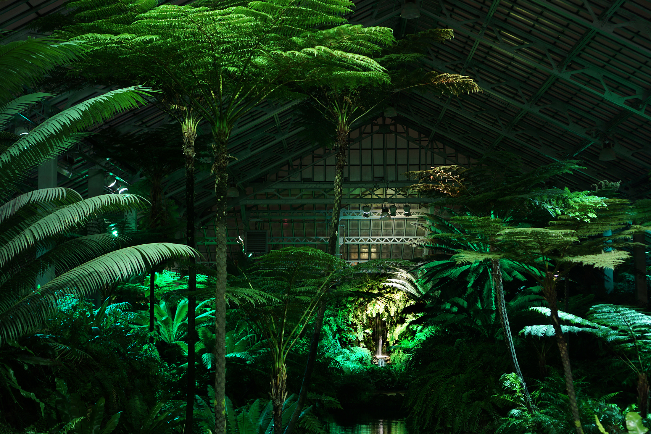 Garfield Park Conservatory at night, Chicago / Darker than Green