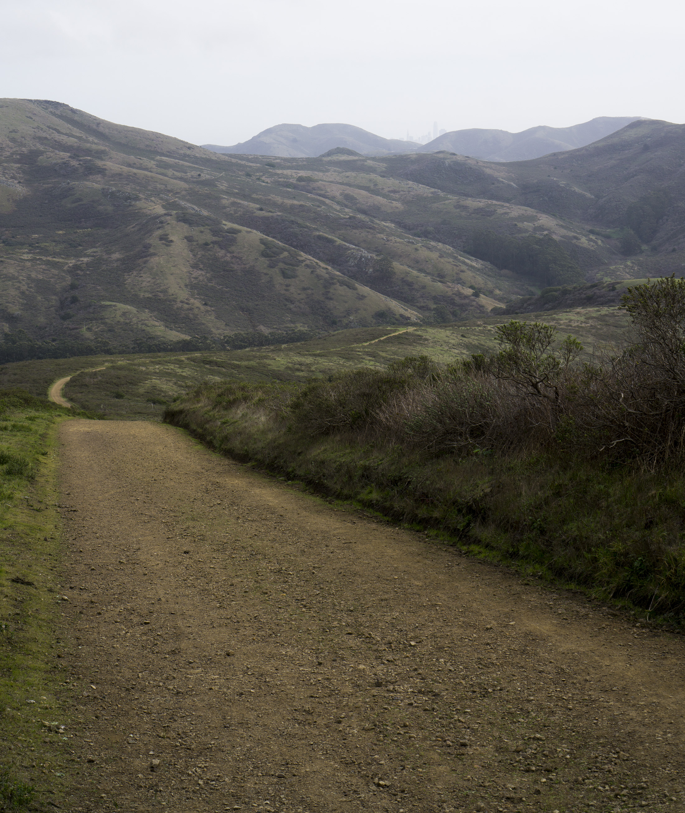 Tennessee Valley Trail, Marin Headlands, Golden Gate National Recreation Area / Darker than Green