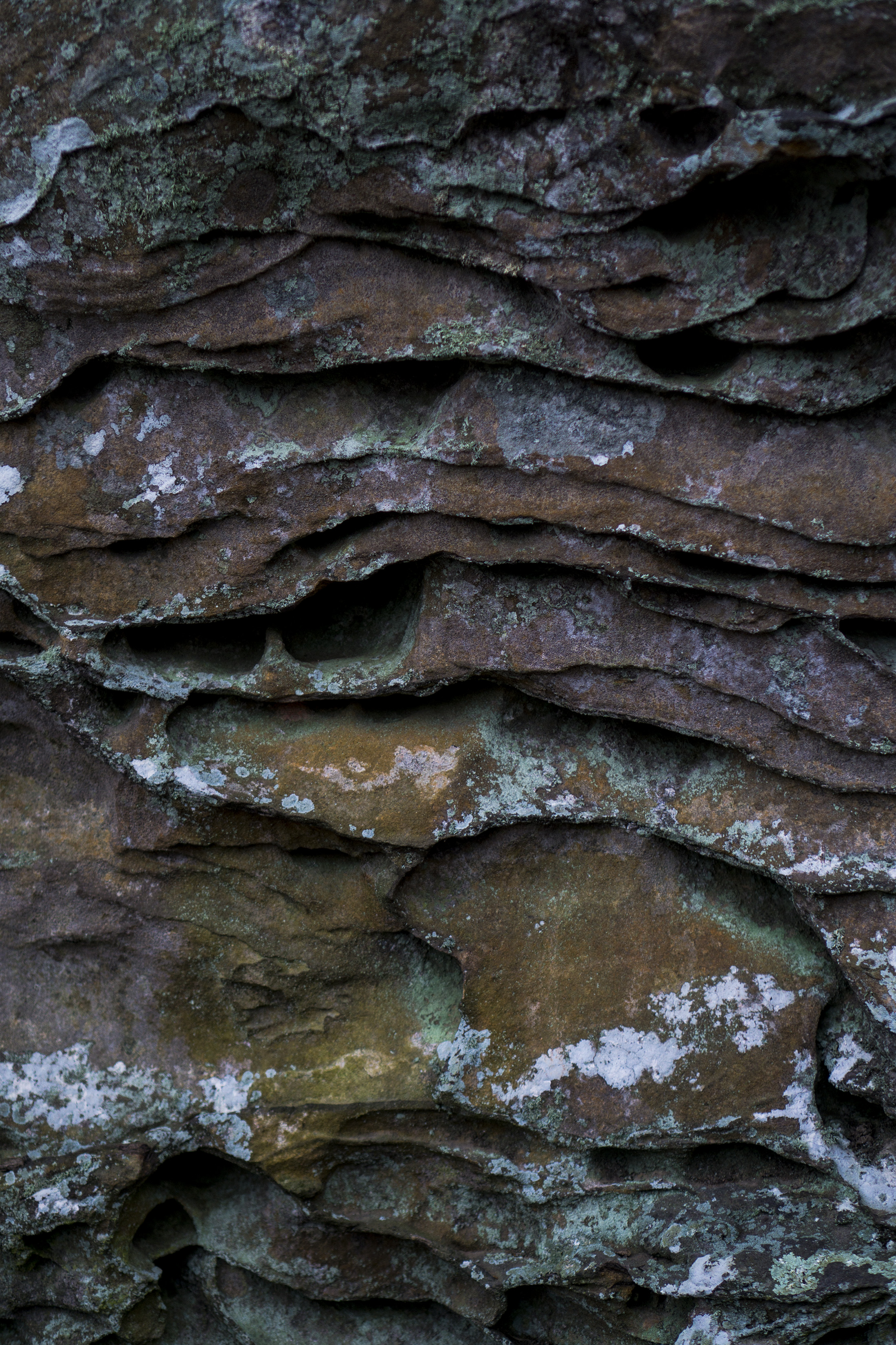 Rock formation, Garden of the Gods, Shawnee National Forest, IL / Darker than Green