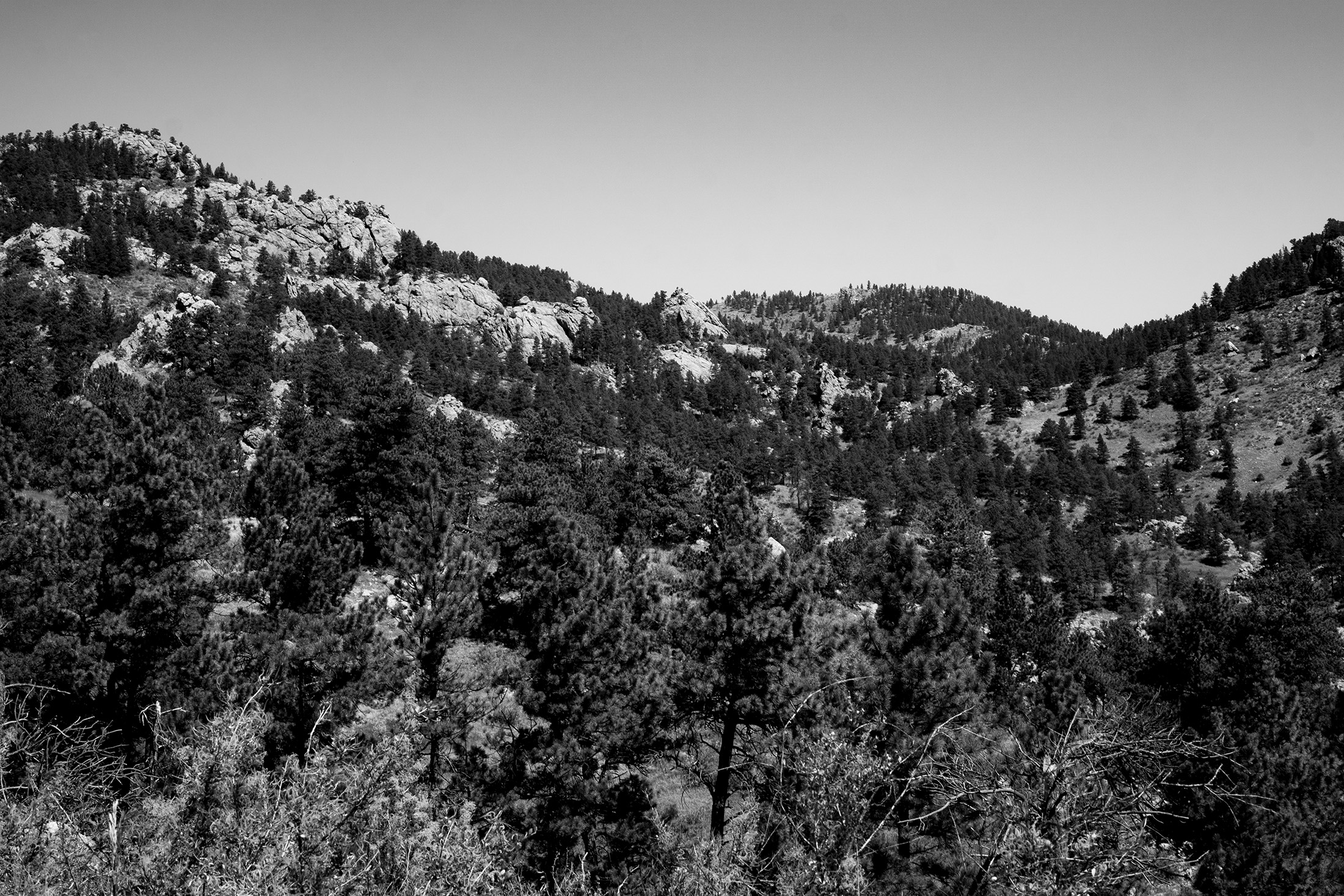 View toward mountains along Horsetooth Rock Trail, Colorado / Darker than Green
