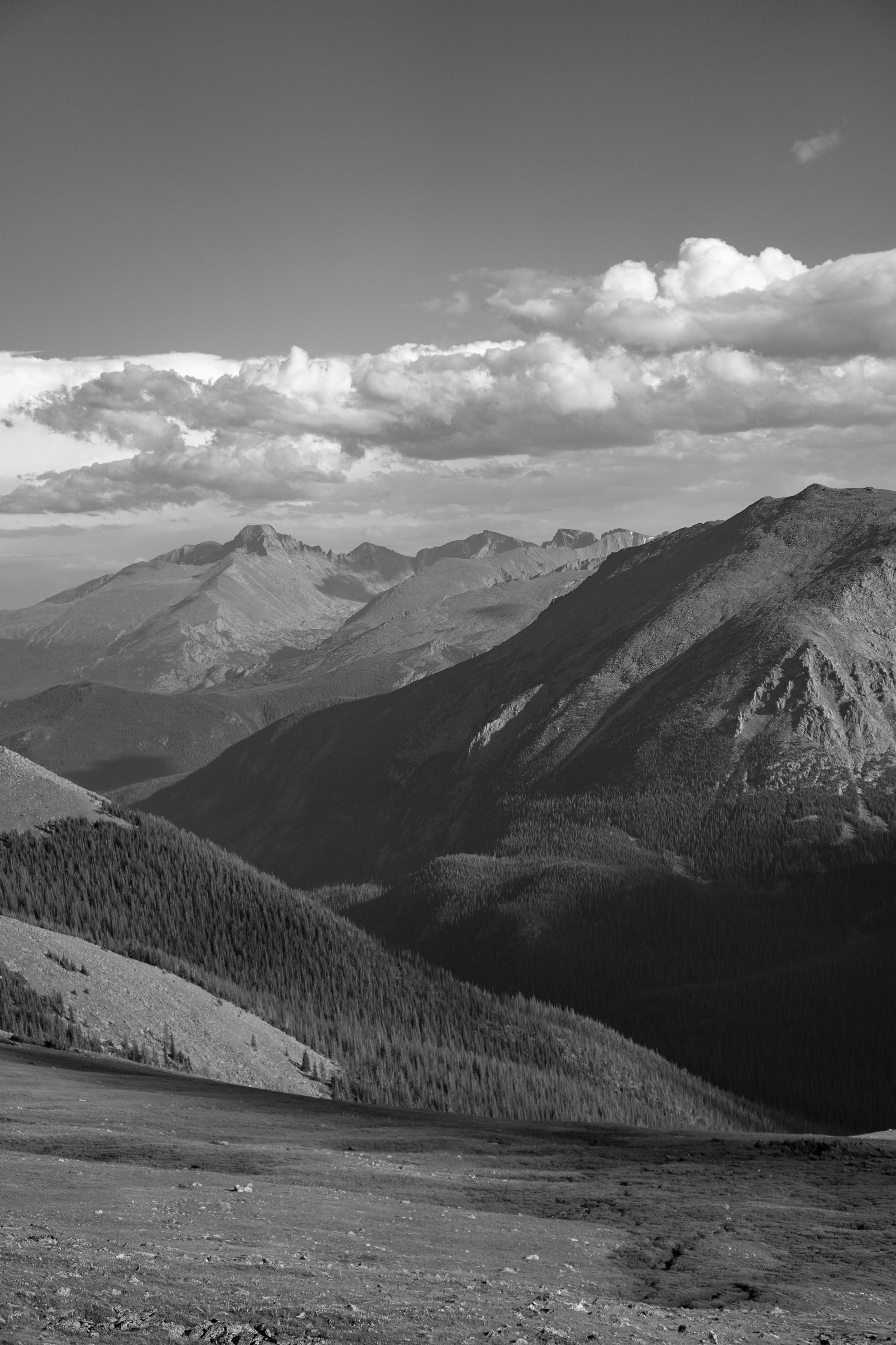 Vast view from Trail Ridge Road, Rocky Mountain National Park / Darker than Green