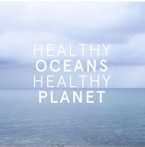 healthy oceans healthy planet