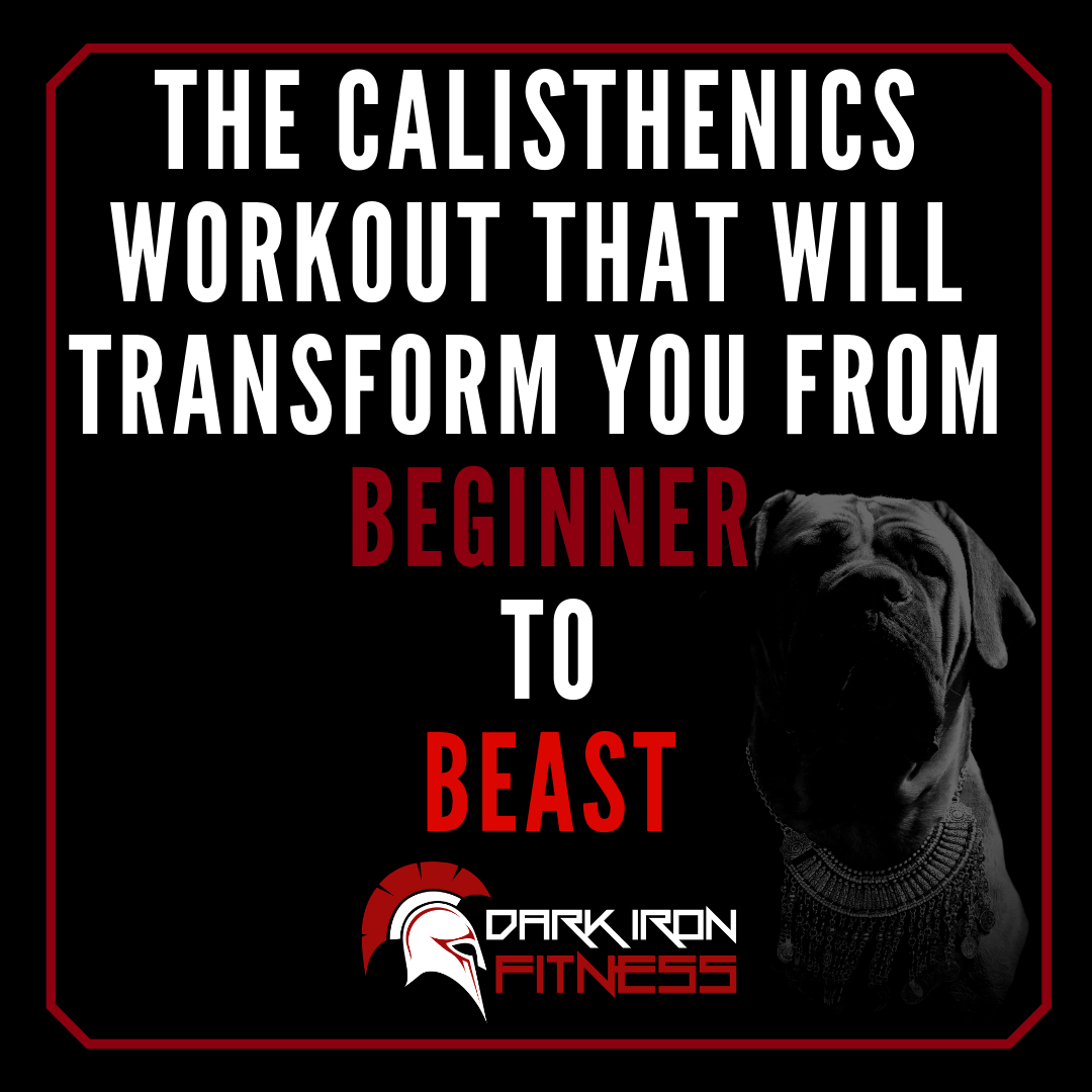 the calisthenics workout that