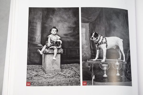 Dog Photo, Child Photo,Maltese History, Melitensia, Antique, Photography in Malta, Kevin Casha