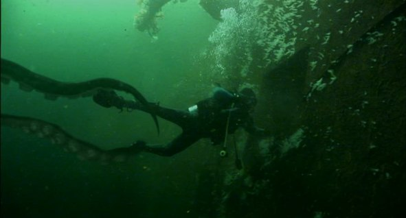 Kraken15