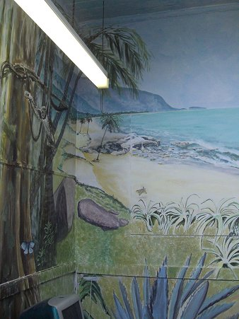 Andy Lloyds wall murals in Longlevens Junior School
