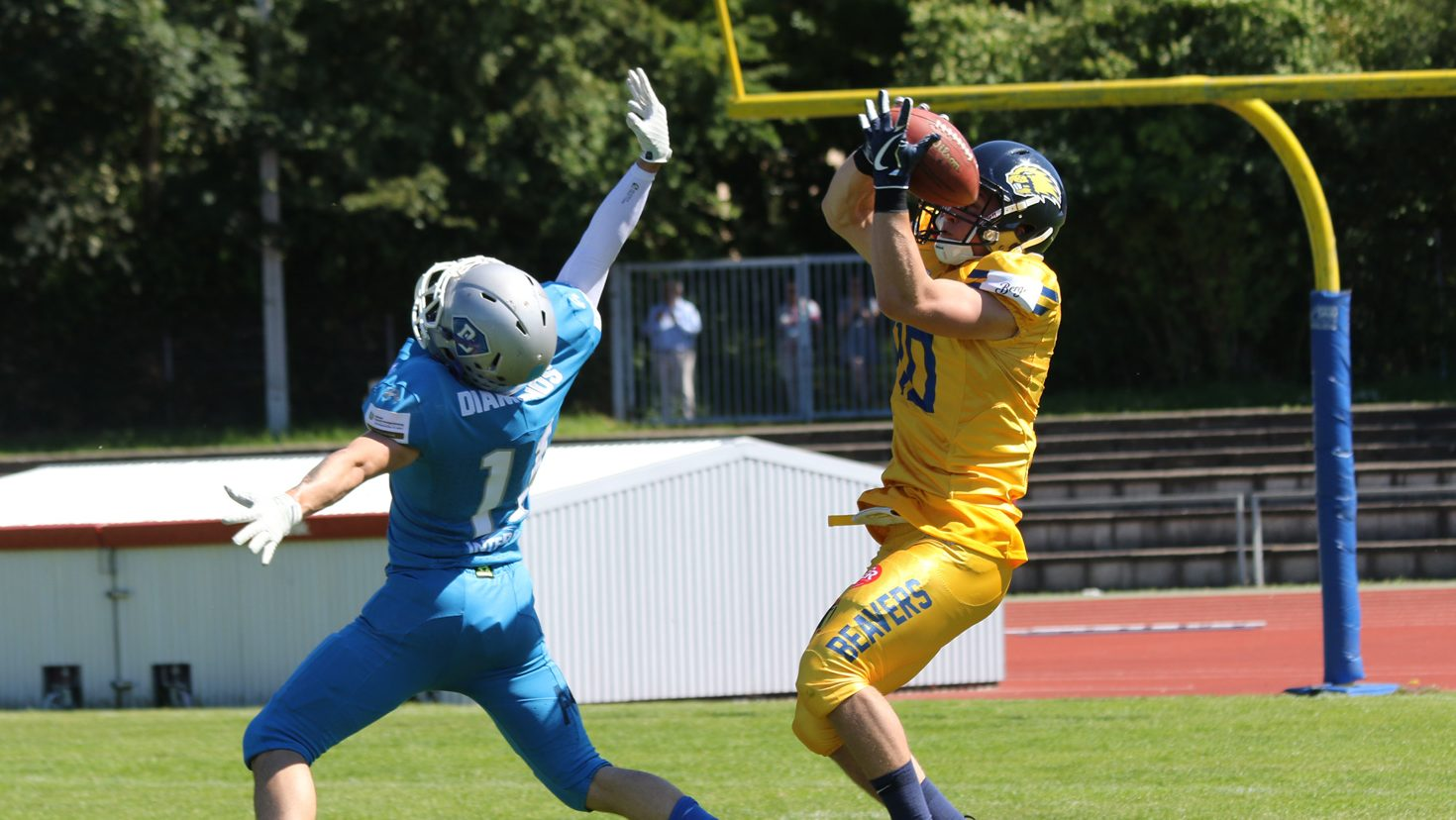 Darmstadt Diamonds gegen Biberach Beavers: Ingo Berther (Biberach) fängt den Ball und wird diesen zum Touchdown für die Beavers tragen. Alex Mc Givern ist geschlagen.