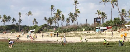 Hundreds of people gathered on International Costal Cleanup day at Coco beach. Photo: Andrew Perkin
