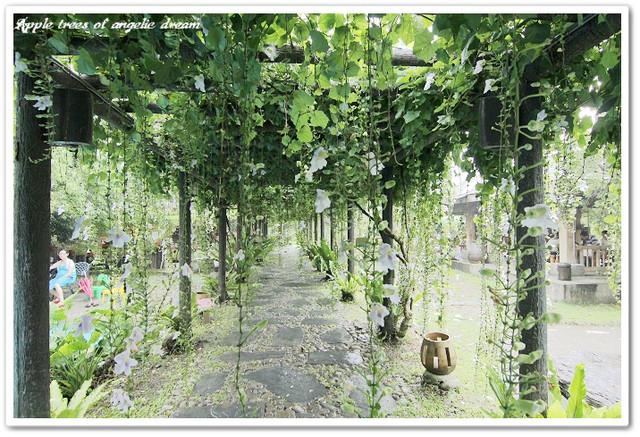 【遊記-宜蘭員山】紫色浪漫下午茶.鄧伯花廊咖啡 - Darren蘋果樹旅遊玩樂誌