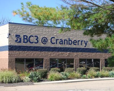 cranberry-bc3-1