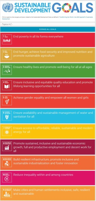 Screenshot from the UN Sustainable Development Goals website