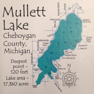 mullett-lake-close-up