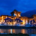 Punaka Dzong by Madhu Phaniraj