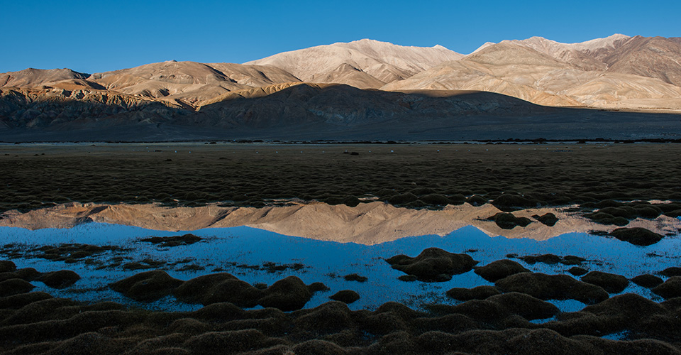 changthang-nomads-photography-2