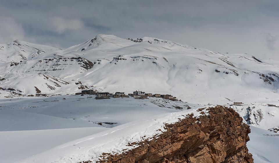 Snow-Leopard-12
