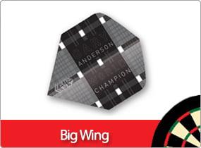 Big Wing
