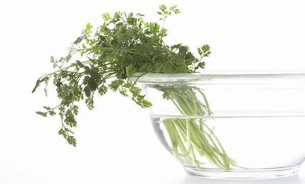 Hydratez vos herbes fraîches dans un verre d'eau