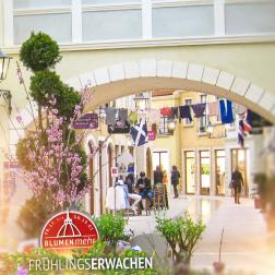 Fruehlingserwachen-Bremerhaven1