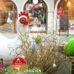 Fruehlingserwachen-Bremerhaven9
