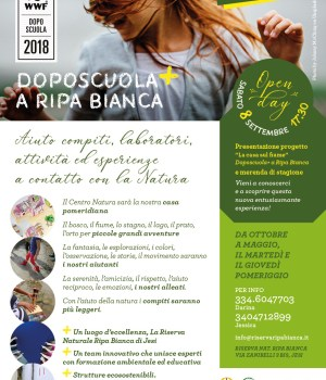 Ripa Bianca