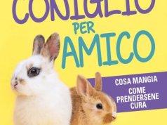 Un coniglio per amico