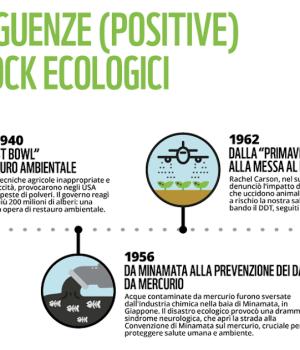 Shock ecology