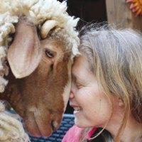 Animal Communication Imparare a comunicare con gli animali