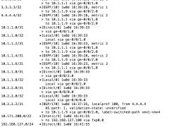 Understanding the JunOS routing table – Das Blinken Lichten