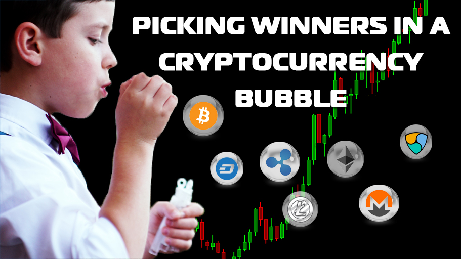 Picking Winners in a Cryptocurrency Bubble